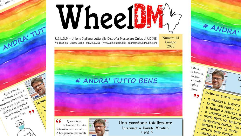 WheelDM 14