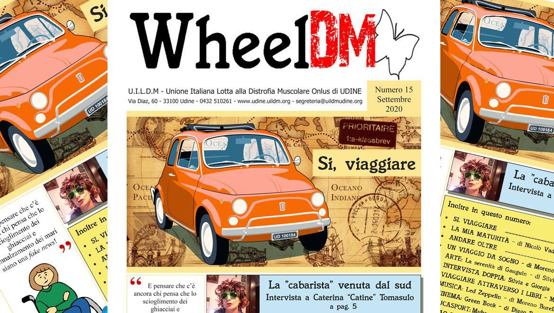 WheelDM 15