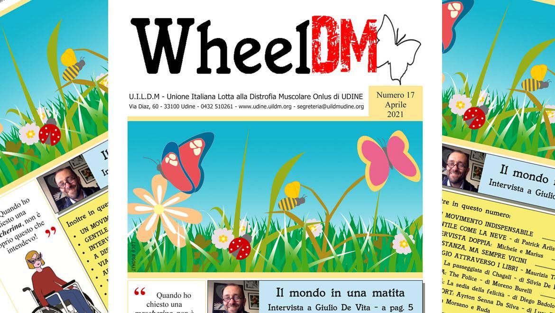 WheelDM n.17
