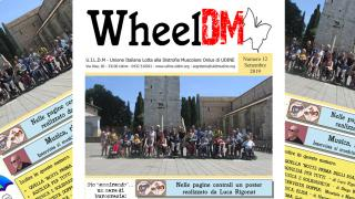 WheelDM n.12